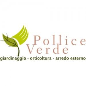 POLLICE VERDE - FERRARA