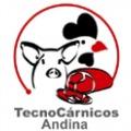TECNOCARNICOS ANDINA